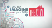 Your body a city
